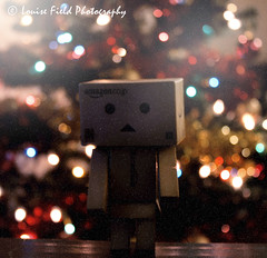 Danbo Snow ((LIVELOVELAUGH)) Tags: christmas xmas winter light snow tree cute lights pretty bokeh indoor christmastree christmaslights stillife danbo danboard