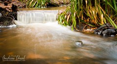 Gelt beck (Andrew Cheal Photography) Tags: england water river waterfall stream beck north smooth cumbria brampton gelt geltwoods