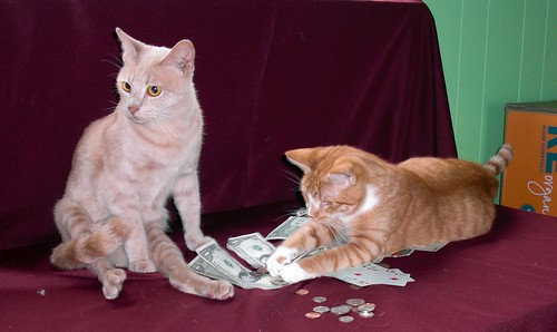 Gambling by rikkis_refuge, on Flickr