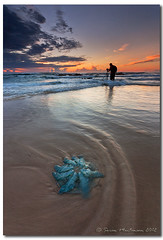 Stranded - I'm not beautiful like you. I'm beautiful like me. (danishpm) Tags: ocean sunrise canon sand jellyfish surf australia wideangle nsw aus 1020mm manfrotto sigmalens northernnsw eos450d hastingspoint 450d tweedshire sorenmartensen hitechgradfilter 09ndreversegrad