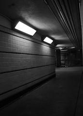 Down Below (phillytrax) Tags: city urban blackandwhite bw usa philadelphia monochrome america underground subway tile noir publictransit unitedstates metro pennsylvania pa philly grayscale septa broadstreetline passageway southphiladelphia southphilly rapidtransit cityofbrotherlylove broadstreetsubway snyderavenue