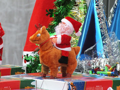 Santa Claus with reindeer (CyberMacs) Tags: christmas xmas tree turkey events trkiye places noel istanbul christmastree celebration trkorszg fatherchristmas santaclaus karcsony saintnicholas beikta constantinoble othernames