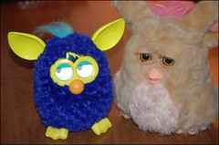 New Addition to the Furby Family : ) (arrow734) Tags: week1 furby 52of2012 furbyfriends