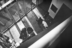 In & Out (emanuele_f) Tags: film 50mm 11 d76 fujifilm neopan400 biancoenero analogica f15 pellicola zorki4 jupiter3