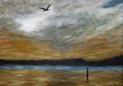 winter (davedehetre) Tags: winter sunset sky usa cloud lake reflection bird art painting fly lawrence artwork seagull canvas kansas