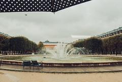 Paris sous la pluie (bestarns [www.spiritofdecay.com]) Tags: paris pluie ernest 2012 sebastien sous bestarns