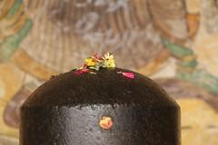 Holy lingam (daniel.virella) Tags: india storm rain temple shrine unescoworldheritagesite unesco devotion offering shiva thanjavur lingam ling cyclone tamilnadu votive linga chola tanjore shivling shivalinga nylam  thegreatlivingcholatemples sribrihadeeshwara