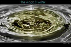THE_MAGIC_OF_WATER   -   EXPLORE - 206 (2013, 21/01) (MANU_LEFT) Tags: madrid camera espaa water navidad milk drops spain agua nikon down el gotas otoo aquatic retiro leche caen fotografica the paseos hortaleza niky asociacion d90 solidaria talleres fotograficos aphotos alaweb2009 micalaweb