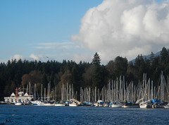 Towards the Rowing Club (David J. Greer) Tags: blue winter sea sky cloud water club vancouver clouds sailboat harbor boat still nice day bc power harbour row calm rowing mast sailboats coal masts powerboat