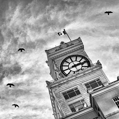 To have faith is to have wings (. Jianwei .) Tags: street city sky urban cloud canada bird clock vancouver fly high flag clocktower a55 kemily