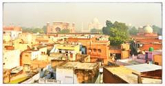 India // Rajasthan 2012-10-265