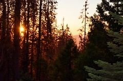 A setting sun (jqrz11) Tags: light sunset sun mountains nature weather forest photography cabin woods elevation pinetrees settingsun sierranationalforest shaverlake californiaforest naturesspecialeffects