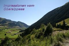 2007-10-002 (francobanco2) Tags: pass psse furka grimsel susten oberalp furkapass grimselpass motorrad