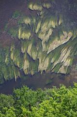 Algue de la Dordogne (pgauti) Tags: algue dordogne perigord rivière river pentax k5 k5ii pgauti aficionados justpentax green vert 5photosaday
