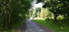 Kilmarnock-Irvine Cycle Path. Walking in the Sunlight. (Phineas Redux) Tags: kilmarnockirvinecyclepath ayrshirecyclepaths ayrshire scotland sustranscyclepathno73
