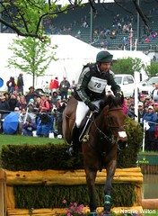 Rolex17 (NRJWphotography) Tags: rolex rolex2016 horse lexington kentucky brownhorse crosscountry