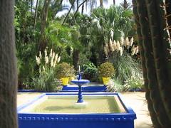 (Grigory Gusev) Tags: morocco   marakesh majorelle