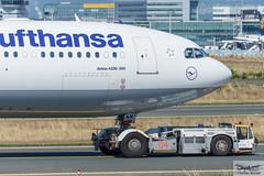 Lufthansa Airbus A330-343E D-AIKM (714746) (Thomas Becker) Tags: lufthansa dlh airbus a330343e a330343 a330300 a330 daikm staralliance msn 913 250208 fwwyj 190308 leos tld tpx500 towbarless tow tug pushback fraport flughafen airport aeroport aeropuerto aeroporto fra eddf frankfurt plane spotting aircraft airplane avion aeroplano aereo 飞机 vliegtuig aviao аэроплан samolot flugzeug germany deutschland hessen rheinmain nikon d7200 nikkor 80400g dx raw gps aviationphoto cthomasbecker 160817 taxiing noseshot geotagged geo:lat=50039523 geo:lon=8596970 aerotagged aero:airline=dlh aero:man=airbus aero:model=a330 aero:series=300 aero:special=e aero:tail=daikm aero:airport=eddf