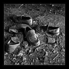 Scarpe I (Emilio Casini) Tags: bn bw blackwhite bianconero scarpe hasselblad 6x6 format120 monocromo