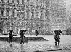 The Tempest (Petricor Photography) Tags: milan milano street photography black white blackandwhite and canonpersonalconnection candid rain rainy storm wind people texture pattern city urban
