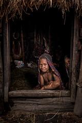 The Dani's Girl (tehhanlin) Tags: indonesia wamena westpapua irianjaya jayapura nusantara thedanis sukudani tribe humaninterest portrait lembahbaliem baliemvalley lembahbaliemfestival baliemvalleyfestival sony a7r2 a7rm2 ngc