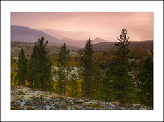 Autumn in Rondane (andreassofus) Tags: rondane rondanenationalpark drlseter norway autumn fall trees sky sunset mountains nature landscape grandlandscape light naturallight outdoor travel travelphotography pinetrees beautiful awesome canon norwegiannature