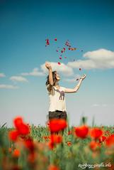 IMG_1081 (giraffes_fly) Tags: poppies poppyfield poppy poppygirl poppylover inpoppies happiness
