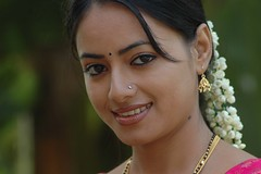 South Actress Madhuchandaphotos Set-3-Hot In Traditional Dress (12)