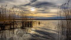 Awakening (Jens Haggren) Tags: olympus em1 morning sunrise sun sky clouds sea seascape water reflections jetty pier landscape nature reed nacka sweden