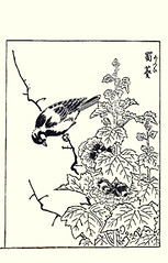 Hollyhock and great tit (Japanese Flower and Bird Art) Tags: flower hollyhock alcea rosea malvaceae bird great tit parus major paridae tatsunobu kitao kano woodblock picture book japan japanese art readercollection