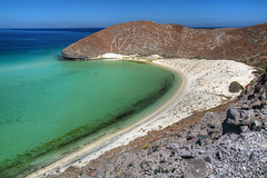Pleasure and Pain (hapulcu) Tags: bajacalifornia playabalandra seaofcortez bcs baja mexico mexique beach desert plage playa strand