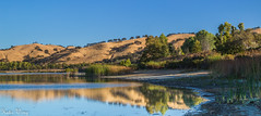 Sunrise at Livermore (katiewong511) Tags: naure livermore park regional landscape sunrise reflections lake california eastbay ebprd water light