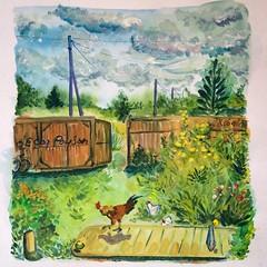 Le coq paysan (Andrey Borodulin) Tags: gouache  sketch coq   countryside village russia russianvillage