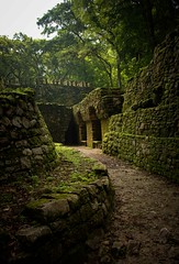 Yaxchilan, Chiapas, Mx (Rod Waddington) Tags: mexico mexican chiapas yaxchilan maya mayan ruins ruinas historical historic history culture cultural stone outdoor
