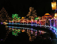 One Of The Scenes At The Festival Of Lights At VanDusen Gardens In Vancouver BC (DJ's Photography@dj777_100er Always Catching Up) Tags: saariysqualitypictures