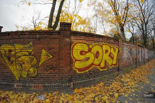 Graf Sory