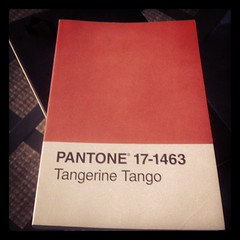 Another notebook to fill #pantone #tangerine #...
