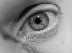 Eye in black and white (dandraw) Tags: blackandwhite macro eye closeup mono nikon eyeball kenko extensiontubes kenkoextensiontubes