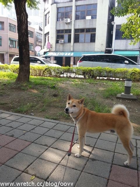 20121125_094101_nEO_IMG.jpg