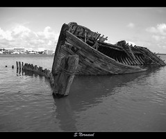 P7111327 1 (snormand) Tags: spiritofphotography flickrunitedaward