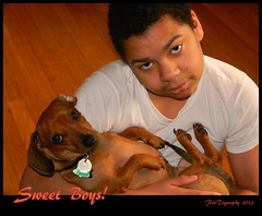 Sweet Boys! (Flo Tography) Tags: dogs animals young dachshund youngman punkin stix doxie canines maalik