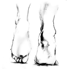 (Joelle Poulos) Tags: art feet painting foot drawing stepping anatomy oil biro uploaded:by=flickrmobile flickriosapp:filter=nofilter