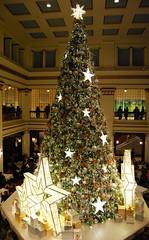 004_edited-1 (courtneyureel) Tags: christmas holiday chicago tree lights december macys statestreet 2012 walnutroom