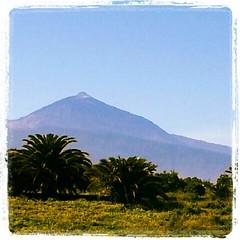 Alongarse a la ventana y poder observar esta maravilla de la naturaleza no tiene precio. El padre #Teide