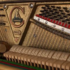 365 (grotos) Tags: piano string strings