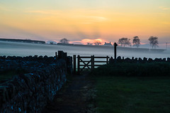 "Misty Sunset in Embelton • <a style=""font-size:0.8em;"" href=""https://www.flickr.com/photos/21540187@N07/8333513790/"" target=""_blank"">View on Flickr</a>"