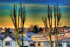 Morning sun over the Wavertree (Tony Shertila) Tags: blue trees light sky urban david cold ice clouds liverpool europe king day rooftops classroom cloudy britain frosty hdr merseyside wavertree pollarded 100commentgroup mygearandme