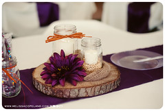 0007_poundswedding (melissacopeland) Tags: fallwedding countrywedding countrychicwedding melissacopelandphotography terrehauteindianaweddingphotographer sullivanindianaweddingphotographer rusticredbarnwedding