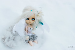 Gabrielle (Konato) Tags: blue white snow angel eyes wing gabrielle wig pullip custom custo kikyo dashka zuora konato