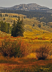 Deep in the heart of Yellowstone back country (P. Oglesby) Tags: autumn landscapes hiking trails yellowstonenationalpark backcountry thehighlander godlovesyou sloughcreek